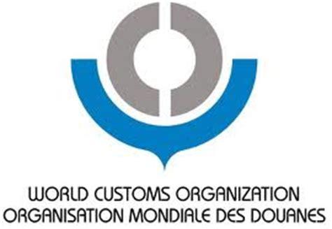Essay about world health organization - napurp32essaycom